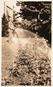 Stevens watering roses - mid 1930s - Huntington archive